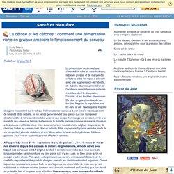 La cétose et les cétones : comment une alimentation riche en graisse améliore le fonctionnement du cerveau