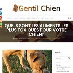 alimentation interdite chien - Liste des aliments dangereux et toxique à ne pas donner à votre chien