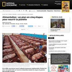 Alimentation : un plan en cinq étapes pour nourrir la planète