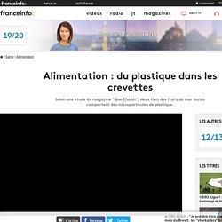 FRANCE 3 28/08/18 Alimentation : du plastique dans les crevettes