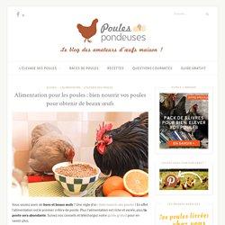 poulespondeuses.com - Comment bien nourriture vos poules pour obtenir de beaux oeufs?
