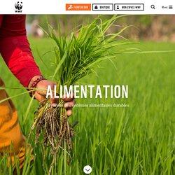 Alimentation : pour des systèmes durables