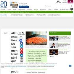 Alimentation: Du saumon transgénique canadien peut-il arriver dans nos assiettes avec le CETA ? - 20minutes