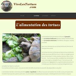 L'alimentation - les tortues terrestres - vivelestortues.com