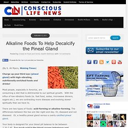 Alkaline Foods To Help Decalcify the Pineal Gland