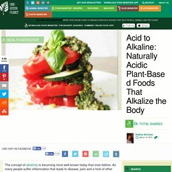 Acid to Alkaline: Naturally Acidic Plant-Based Foods That Alkalize the Body