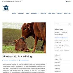 All About Ethical Milking - Mr. Milk