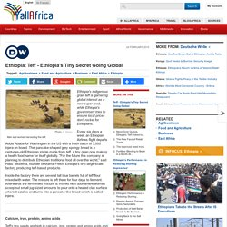 Ethiopia: Teff - Ethiopia's Tiny Secret Going Global
