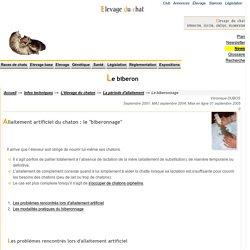 Allaitement artificiel des chatons : Donner le biberon