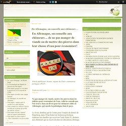 En Allemagne, on conseille aux chômeurs ... - Le blog de SYNDICAT SOLIDAIRES SUD EMPLOI GUYANE