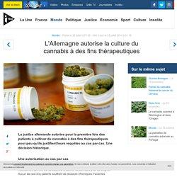 L'Allemagne autorise la culture du cannabis à des fins thérapeutiques