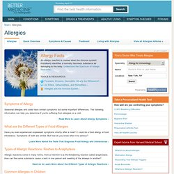 Allergies - Allergy Facts - Allergy Symptoms