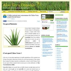 N'allez surtout pas consommer l'Aloe Vera avant d'avoir lu ça !