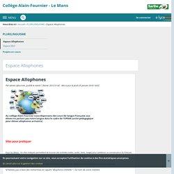 Collège Alain-Fournier - Le Mans - Espace Allophones