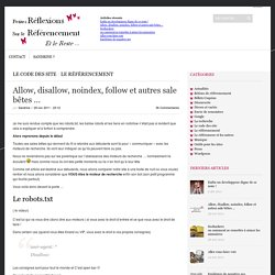 Allow, disallow, noindex, follow et autres sale bêtes …