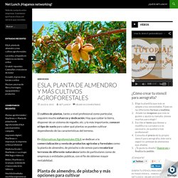 Planta de almendro y más cultivos en Agroforestales ESLA