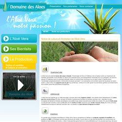 Plantes d 39 int rieur s 39 alimenter pearltrees - Entretien aloe vera interieur ...