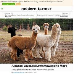 Alpacas: Loveable Lawnmowers No More