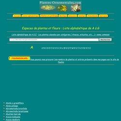 Liste alphabétique - Plantes et fleurs du jardin ( Photos , infos )