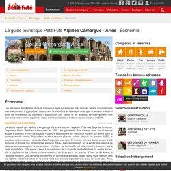 Alpilles Camargue - Arles, Le guide touristique Petit Futé : Économie