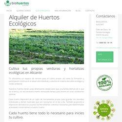Alquiler Huertos Ecológicos. Alicante y Elche – BioHuertos Alacant