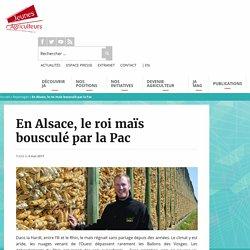 En Alsace, le roi maïs bousculé par la Pac - Jeunes Agriculteurs