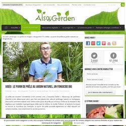 Vidéo : Le purin de prêle au jardin naturel, un fongicide bio
