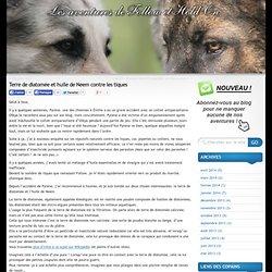Les aventures de Follow et Hold'On mes Altdeutsche Schäferhunde