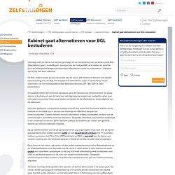 FNV ZZP - Kabinet gaat alternatieven voor BGL bestuderen voor gedreven zzp'ers