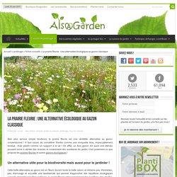 La prairie fleurie : Une alternative écologique au gazon classique
