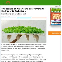 Thousands of Americans are Turning to Hydroponic Technique