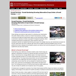 Forest Farming - Forest Gardening Growing Alternative Crops Under a Forest Canopy | CAES Publications