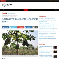 Alternative treatments for dengue fever - Health