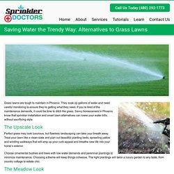 Saving Water the Trendy Way: Alternatives to Grass Lawns - Sprinkler DoctorsSprinkler Doctors