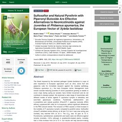 INSECTS 30/07/19 Sulfoxaflor and Natural Pyrethrin with Piperonyl Butoxide Are Effective Alternatives to Neonicotinoids against Juveniles of Philaenus spumarius, the European Vector of Xylella fastidiosa