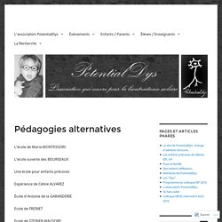 Pédagogies alternatives – PotentialDys
