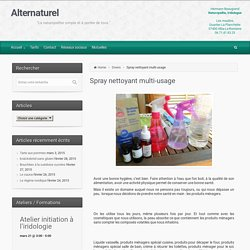 Alternaturel – Spray nettoyant multi-usage
