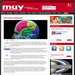 THC contra el Alzheimer -Muy Interesante México