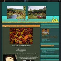 Nougat rouge aux amandes et noisettes - Le blog de niwaki17