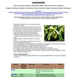 Amandier, Prunus dulcis : variétés