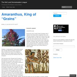 "Amaranthus, King of ""Grains"" « The Arid Land Homesteaders League"
