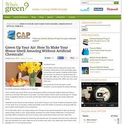 Green Up Your Air: How To Make Your House Smell Amazing Without Artificial Chemicals! - Who's Green?