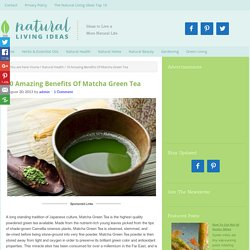 10 Amazing Benefits Of Matcha Green Tea