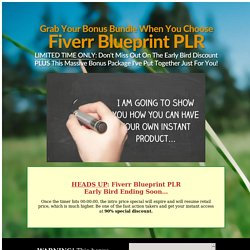 Your Amazing Bonus Bundle For Fiverr Blueprint PLR