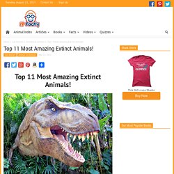 Top 11 Most Amazing Extinct Animals! - Fun Facts You Need to Know!