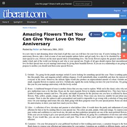Amazing Flowers That You Can Give Your Love On Your Anniversary