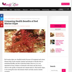 8 Amazing Health Benefits of Red Marine Algae