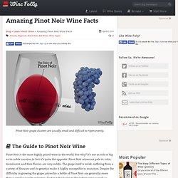 Amazing Pinot Noir Wine Facts