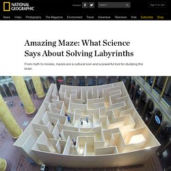 Amazing Maze: What Science Says About Solving Labyrinths