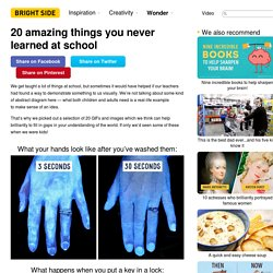 20 amazing things you never learned at school